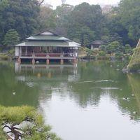 清澄庭園は三菱財閥・岩崎家が築いた回遊式庭園で,各地からの奇石・名石が特徴的.近くの深川江戸資料館にも行った.