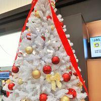 東京(羽田)⇒旭川行 JAL553便 条件付き運行;10:35発 ☆雪降る中-定刻に到着-拍手!