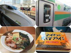 冬の近江・美濃(22)【終】新幹線と東海道線・横須賀線2階建てグリーン車で帰路