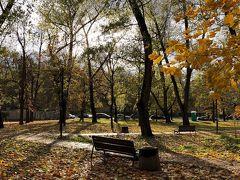 紅葉で黄金に輝く秋のポーランド堪能旅行 ~ダイジェスト版~