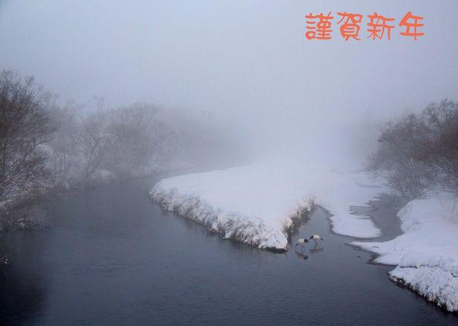 今年もよろしくお願いいたします<br />三が日はもっぱら初詣と箱根駅伝で野鳥からすっかり離れて過ごしました<br /><br />表紙は数年前の撮影ですが年のスタートに相応しいと思いアップしました<br />この写真で一句<br />湿原の 朝霧が包む 夫婦鶴<br /><br />今年の初撮りは1月4日の三番瀬からです<br />