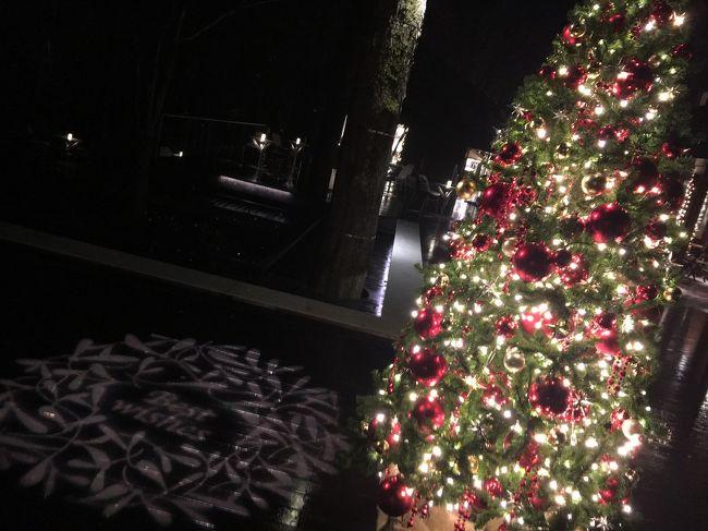 クリスマスシーズンにイルミネーションを見に言って来ました!
