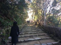 年末年始京都から近江の旅