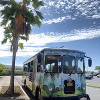 サンクスギビングにかけてハワイ島と定番コオリナ滞在2018 ハワイ島編
