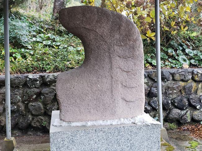 島根からの帰り、米子南インターから車で15分余りのところ伯耆町に、福樹寺というお寺があります。ここは、白鳳時代において在地豪族の寺院と思われ跡が見つかっています。在地の大寺という地名から、大寺廃寺跡として知られています。ここから出土したもので代表的なものは、全国に3例しか出土していない石製鴟尾です。<br /><br />石製の鴟尾は、群馬県前橋市の山王廃寺跡から2例出土しているほかは、ここ大寺廃寺跡で出土した1例があるのみです。<br /><br />鴟尾は、大陸から渡ってきた寺院などの屋根の両脇に日よけのまじないとして配され、火災が起きると水を吐き出し火を止めるとされたものです。この鴟尾が唐代に変化して、鬼瓦やしゃちほこが配されるようになりました。<br /><br />大寺廃寺跡の石製鴟尾は、福樹寺の竹林の中に放置されていたものが、大正の時代に鴟尾として知られるようになり、昭和に入り重要美術品、重要文化財と指定され保存されるようになっていったそうです。<br /><br />保存状態のよさに驚きました。古代史が好きな方には一見の価値ありです。