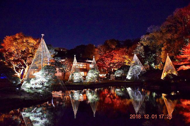 2019年平成最後の年となりました。<br />旅行記は季節がちょっと遅れておりますが、晩秋の紅葉もんです。<br /><br />12月に紅葉??<br />都内は今年は暖かいので紅葉が長引いていることもあるんでしょうけど・・・<br />見に行ったのは、文京区の椿山荘そばの池泉回遊式庭園の新江戸川公園とも呼ばれる肥後細川庭園。<br />11月23日(金)~12月2日(日)の期間限定で夜の日本庭園ライトアップも開催されました。<br />ライトアップもある紅葉では六義園が有名ですが、混雑しそうだったので、今年は以前散策で行ったことがある肥後細川庭園にしました。<br /><br />これが大正解で、混雑もなく、また今年は夏の異常な暑さや晩秋でも暖かだったことから色づきがよくないスポットが多かった中、みごとな紅葉と夜のLEDライトアップが見れて幻想的な景色でした。<br /><br />肥後細川庭園の紅葉ライトアップ<br />https://parks.prfj.or.jp/higo-hosokawa/information/秋の紅葉ライトアップ~ひごあかり~開催決定!-2/