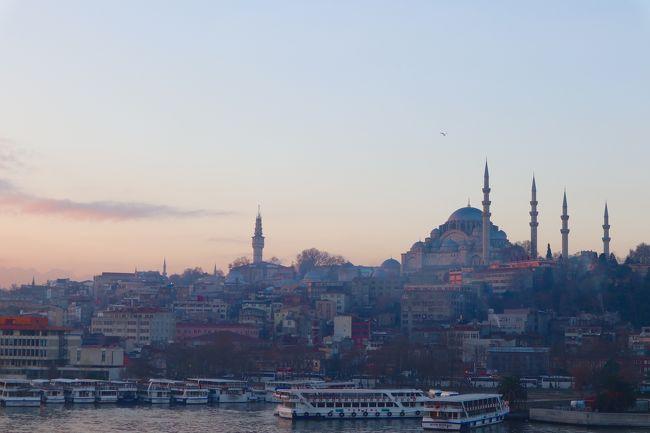2回目の一人旅です。<br /><br />トルコは親日国としても有名ですし、またトルコは古代ローマ帝国、ビザンツ帝国、オスマン帝国と経てきたその独自の歴史も有名です。<br /><br />今回、古代の遺産や建造物の実物を自分の目で見て古代の人々の偉大さを実感したいと思っていたのでトルコに旅行することにしました!(航空券が往復で8万円と安かったということもありますが…)<br /><br />今回の旅路一覧<br />1日目&amp; 2日目(12月27日、28日)<br />成田国際空港 → シュレメージェボ空港(ロシア) → アタテュルク空港(28日1:30AM着) → テオドシウスの城壁 → ガラタ塔 → 昼食 → ホテル(1) → 絨毯屋に絡まれる(part1) → ボスポラス海峡クルーズ → 軍事博物館 → 夕食 「終了」<br /><br />3日目(12月29日)<br />コンスタンティノープル競馬場 → スルタンアフメット(外観だけ) → 地下宮殿 → アタテュルク空港 → カイセリ空港 → カッパドキアホテル(2) → 周辺散策 「終了」<br /><br />4日目(12月30日)<br />カッパドキア グリーンツアー  「終了」<br /><br />5日目(12月31日)<br />カッパドキアホテル(2) → カイセリ空港 → アタテュルク空港 → ホテル(3) → トプカプ宮殿 → アヤソフィア → 絨毯屋に絡まれる(part2) → ぼったくりバーに連れていかれそうになる → 公園散策 → 夕食  →  ホテルにて新年を迎える 「終了」<br /><br />6日目(1月1日)<br />ホテル(3) → ルメリヒサル → タクシム広場 → 靴磨きにぼったくられる → ドルマバフチェ宮殿(外観だけ) → 船にてアジア側の街カラキョイへ → 散策 → 昼食 → アジア側 建設途中のモスク → ウクスダールへ → 乙女の塔 船着場 → エジプシャンバザール → ホテル 「終了」<br /><br />7日目(1月2日)<br />帰国の途<br />ホテル → アタテュルク空港 → シュレメージェボ空港 → 成田国際空港<br /><br />8日目(1月3日)<br />帰国<br />成田国際空港 12:40頃着