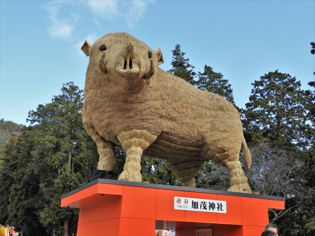 姫路市安富町安志の加茂神社に初詣でに行って来ました。<br />加茂神社の参道には、本物そっくりの高さ5メートル、重さ2.5トンの巨大な「イノシシ」が鎮座していた。<br />1977年以来同神社では毎年巨大な干支の置物が名物になっているので有名。今年のイノシシはたつの市の建設会社社長が家族ぐるみで約1ヵ月かけて仕上げたそうで、骨組みにヒノキ、表面には酒米「兵庫夢錦」の稲穂で覆われている。<br />また本殿前にも高さ約4メートル、重さ1.5トンの「うり坊」がいて、体の縞模様が表現されていた。