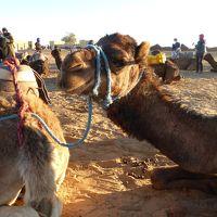 モロッコ周遊10日間[3]サハラの朝日とトドラ渓谷