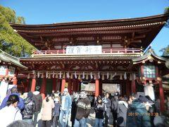太宰府天満宮 初詣('19年1月)