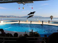 2018福岡&ハウステンボス3泊4日の旅(4日目水族館マリンワールド海の中道)