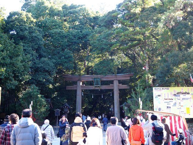 例年2日にお参りする大神神社(おおみわじんじゃ)、風邪のためこの新年は4日になりました。<br />そのためか参拝する人も緩和されたようで、穏やかな日和の中落ち着いて参拝することができました。<br />大神神社からは、橿原のパスタ屋さんに回ります。<br /><br />【写真は、大神神社の二の鳥居です】