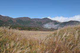 秋の優雅な箱根旅行♪ Vol.10 仙石原:黄金のすすき草原 雲海が流れる♪
