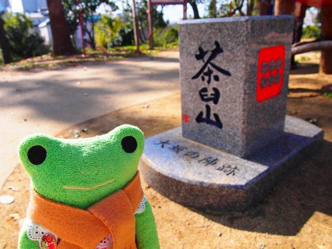 お友達が大阪に遊びに来たので、大阪プチツアーに連れまわしました。<br />歴史も好きなので前回は京都で伏見稲荷に行ったり。<br />今回は特に行きたい場所の指定も無かったので、私なりに効率よく回れるように考えてプランを練りました。<br />とにかく歩きたくない子www<br />なのであまり歩かなくて済むようにしました。<br />ランチも希望が無かったので食べたことのない串カツに。<br />大阪らしさを少しでも満喫してもらえれば嬉しいね。<br /><br />●移動<br />大阪メトロ 大阪環状線<br /><br />●行った場所<br />安居神社 三光神社 茶臼山<br />