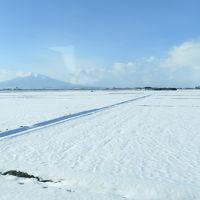旅する幼児 〜どこかにマイルで冬の青森へ〜1日目