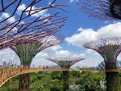 シンガポール観光詰め込みカウントダウンの旅 2/4《ガーデンズバイザベイ〜マーライオン〜ナイトサファリ》