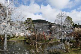 秋の優雅な箱根旅行♪ Vol.18 仙石原:ガラスの森美術館 紅葉ときらめくガラスの競演♪