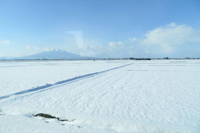 年末も押し迫った12月下旬に3連休がとれることになりました。今年は体調不良の時期が長く、遠出ができず、かつあまり旅をする気にもなれなかったのですが、そうすると「飛行機に乗らない年になってしまうかも」と思い、思い切って旅に出かけることにしました。<br />JALの「どこかにマイル」を使って。<br />青森・三沢・秋田・徳島の中から選ばれたのは、「三沢空港」でした。<br />三沢空港を起点に、青森県内を観光した3日間の旅の記録です。<br />1日目は、三沢から弘前まで。