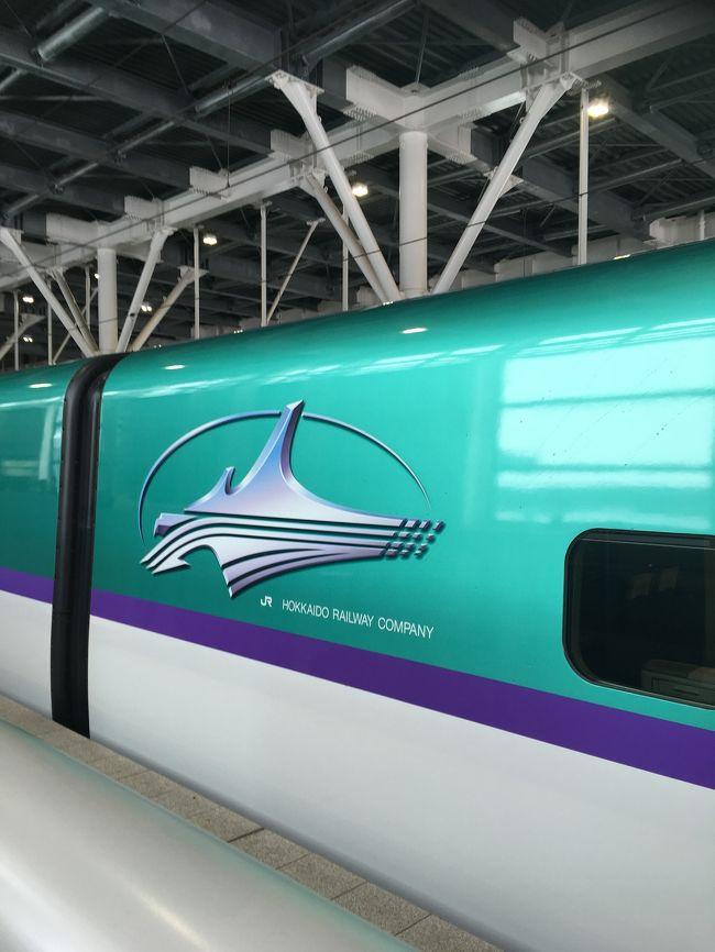 2019元旦から北海道新幹線初乗車にて北の大地へ