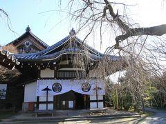 京都寺社巡り。 法住寺門跡、養源院、妙法院門跡、聖護院門跡、赤山禅院、三千院門跡