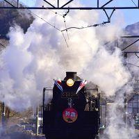 復活した秩父鉄道の蒸気機関車C58-363号機「SLパレオエクスプレス(SL初詣号)」に乗って