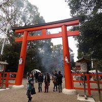 正月の京都と下鴨神社へ初詣