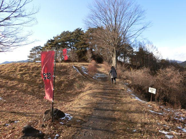 真田の里を巡っています。<br />上田城に移る前の真田の拠点であった山城の真田氏本城跡地を訪れました。<br />カーナビを頼りに訪れたのですが、途中から急坂を登り、行き止まりが真田城です。<br />居城ではなく、普段は先ほど訪れた「真田氏館跡」で生活していたようです。<br />その後、長谷寺から山家神社、上州街道石碑群と真田の里を廻りました。