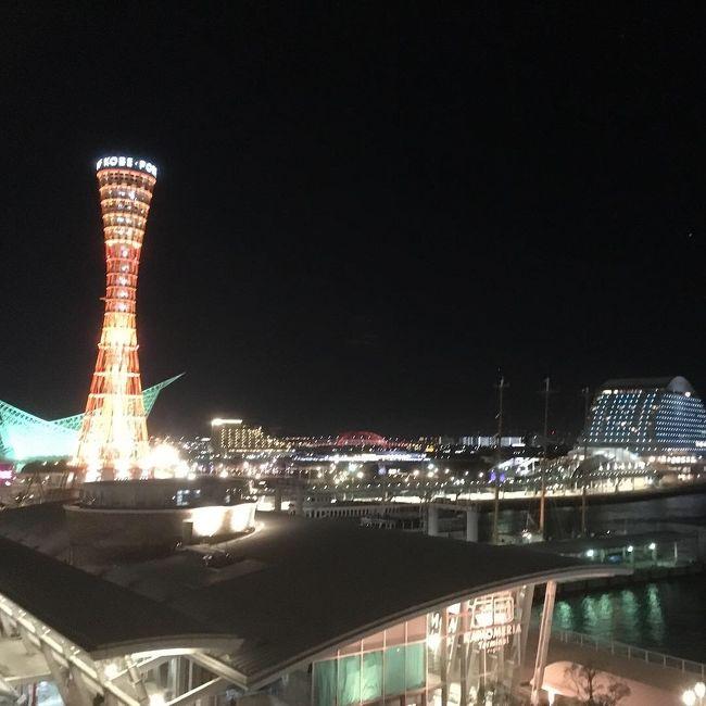 6歳児連れて神戸へ旅行に行ってきました。<br /><br />20:30 仕事から帰って新幹線で東京駅から新神戸へ。<br />23時過ぎにANAクラウンプラザホテル神戸到着。<br />翌日は吉野家で朝食食べて、布引ロープウェイで布引ハーブ園へ。<br />午後は、神戸どうぶつ王国で遊び倒し、<br />お目当のホテル ラ・スイート神戸ハーバーランドへ。<br /><br />短い旅行だったけど、最高の思い出になりました。<br />
