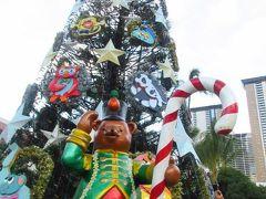 ハワイのクリスマス(第2部)