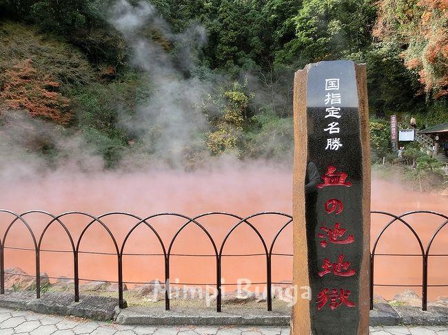 ◆念願の地獄めぐり◆高崎山のお猿さん◆おにやまホテル滞在