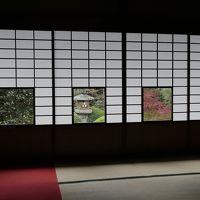 紅葉巡り(京都) 1日目後半