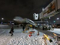 イスラエル8日間の旅(1)アエロフロート・モスクワ乗継で荷物未着