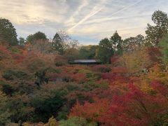 親友と紅葉の京都とサントリー山崎蒸留所