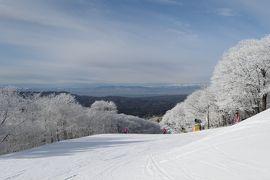 冬の軽井沢旅行♪ Vol.4 軽井沢プリンススキー場 白い樹氷♪