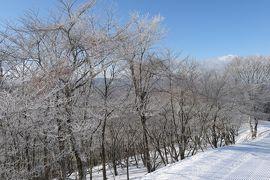 冬の軽井沢旅行♪ Vol.9 軽井沢プリンススキー場 ガラガラ~♪