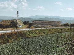 南大隅町宿利原地区の大根寒干しやぐらを見て雄川の滝上流展望台から見てみよう
