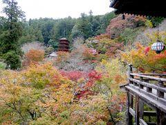 フィンランド人と一緒に京都,奈良旅行3-泊瀬長者亭で昼食,長谷寺,花遊茶屋,奈良プラザホテルに2泊