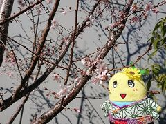 銀座・有楽町・日比谷の旅行記