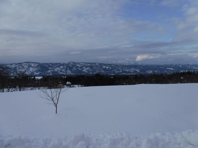 雪に触れる機会が少ない都会派の娘さん&amp;息子さん。<br />そんな二人に雪遊びをプレゼントしようということで、豪雪地帯の十日町へ。遅くなったけど、これがお父さんお母さんからのお年玉です(笑)