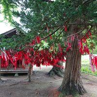 遠野散策と花巻温泉「悠の湯 風の季」1泊2日