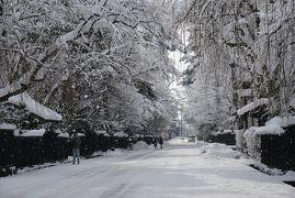 2019冬のみちのくめぐる旅4日間vol.1(角館の雪景色)
