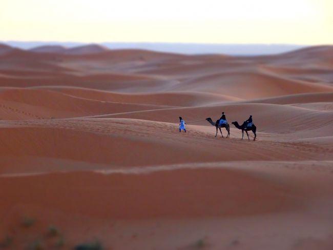 2018年末 モロッコ周遊旅 + ちょこっとパリ (5) メルズーカ