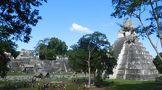 ティカル遺跡周辺