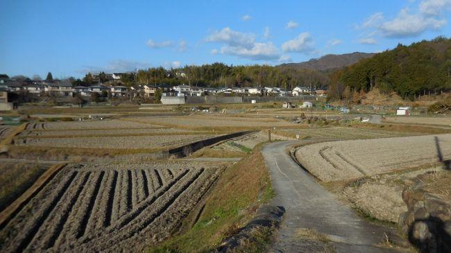 奈良盆地の東に連なる美しい青垣の山裾を縫うように、桜井から奈良に通じる古代の道があります。これが「日本書紀」にも記録がある「山の辺の道」です。道沿いには今でも多くの史跡や古墳があり、「記紀・万葉集」ゆかりの地名や伝説が残っている、まさに「古代ロマンの道」です。<br /><br /> 「山の辺の道」は、ほぼ中間点の石上神宮(いそのかみじんぐう 天理市)を境に、北と南に別れています。一般に「山の辺の道」は桜井から天理までの「南コース」を指し、見どころの多くはこの範囲に集中しているので、歩く人も圧倒的にこちらが多いです。一方「北コース」は見どころが点在していて、車道を歩くことも多いので「南コース」に比べやや人気薄のようです。<br /><br /> 万歩計は奈良に住んで35年余り、この間「山の辺の道」を70回近く歩いています。やはり「南コース」が多いですが、「北コース」も渋い魅力があります。70回中15回程度は南北全コースを通して歩いていますが、この場合35kmの長距離になり丸1日を要します。<br /><br /> 今回は6年ぶりに南北全コース踏破にチャレンジしました。この道は真夏を除き季節ごとに魅力がありますが、万歩計は柿や蜜柑が色づく秋と冬枯れのこの時期を好みます。4トラベルにも「山の辺の道」の旅行記が多数アップされていますが、ここでは地元の道案内のつもりで少し詳しく書きました。<br /><br /> 後半は石上神宮から近鉄奈良駅までの20.5kmです。<br /> お昼も食べたので、さぁ出発です!