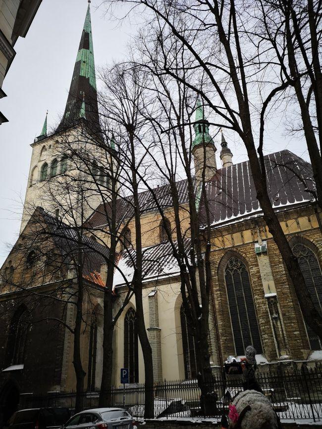 北欧のクリスマス8日間-11-タリン一日観光2