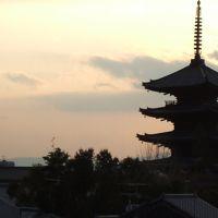 京都ぶらぶらお散歩〜三十三間堂から寧々の道へ