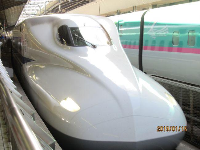 夫婦2人で利用 東京駅から新幹線とリゾート21で伊東で昼食をし、再度普通列車にて次の南伊東駅、降りてからは歩いてゆっくりと。伊東駅からの送迎バスがあるのでアクセスに問題はありません。 宿につながる坂道の奥には竹林があり、宿の門をくぐると純和風のたたずまいと沢を流れる水の音で癒されます! チェックインの際に抹茶と和菓子のおもてなしがありました。 部屋数も少なく純和風のゆったりとした間取りでくつろげます。 部屋風呂もゆったりとした作りです。 大浴場も内風呂、露天風呂もゆったりとしています。(部屋数も少なく宿泊客も限られているのがいいです<br />ね・・・)大浴場の出入り口にはヤクルト(夜)と(朝もありました)が確認はしていません。 また大浴場のほかに貸切露天風呂(小さいですが)もあり竹林を眺めながら癒されます!寒いので利用しませんでした。 お部屋のお風呂は、源泉かけ流しのところがいいですね! 各部屋ごとに食事処があり他の宿泊客を気にせずにいただけます。 食事の内容は懐石で季節の品々が上品に運ばれてきました。食器にもこだわりがあるようです。素敵でしたよ!全体的には純和風で手頃の客数の為、ゆったりとした時を過ごすことが出来ます! 特別な人と特別な時を過ごしたいときに最適な宿です!<br />夜はラーメンがふるまわれていて、ついつい夕食でお腹がいっぱいなのに立ち寄っていただきました。あさっりしたラーメンで美味しかったです。 作っていただいた初老の男性の方もとても感じがよくお話ししながらのんびりくつろぐことが出来ました。<br />