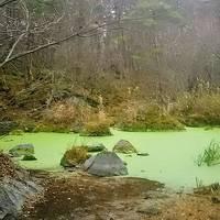 幻想的な沼