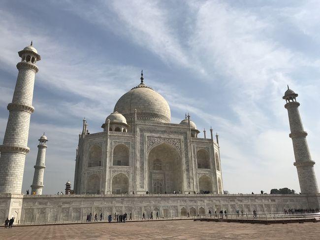 インドに来て6日目は、宿から一歩も出ずに過ぎました。<br /><br />なんだかお腹の調子が良くなくて…<br />下してはないし、痛みも酷い訳じゃないんだけど、無理するな、という身体からのサインだと思った。<br /><br />1月の北インド。日中は暑いくらいだけど、朝と夜は寒いです。<br />安いホームステイに泊まっているので、部屋にはヒーターがなく、それも身体に良くないよう。<br />極め付けは、シャワーがないんです。バケツにお湯を溜めて、身体や頭を洗う方式。<br />凍えます!!!<br /><br />それで、大事を取って、1日お休みの日にしたわけ。<br /><br />ちなみに、飲み水には気をつけてますが、歯を磨いて口をゆすぐ水は水道水。<br />これも良くないのかな…?<br /><br />食べ物は…<br />実はまだ、外食したことなくて。<br />宿で夕食だけ頼んで食べてます。ベジタリアンカレー。<br />日中は、日本から持参のクッキーとか煎餅とか食べつつ、チャイ。<br />やっぱり栄養が足りてないよね、これじゃ…。<br />夜はしっかり食べてるんだけど。<br />同宿の人と喋って情報交換もできて、この夕食には助かってます。<br />一食300ルピーのところ、私は5泊もして毎日夕食を頼んでいるので、200ルピーにまけてくれました。<br />いくらでもおかわりできて、お腹いっぱい詰め込んでます。<br /><br />さて、7日目。<br />明日は早朝ジャイプールへ移動するので、今日がアグラ最後の日。<br />アグラ城に行ったり、同宿の人から話を聞いたりして、気分が最高潮に盛り上がったところで、いよいよタージマハルへ!!!<br />