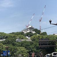 仔猫といっしょ計画(熊本2018 熊本B級グルメ編)